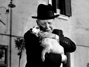 A man's best friend. A woman's best friend. And nobody's friend. Umberto D. is an Italian neorealist masterpiece.